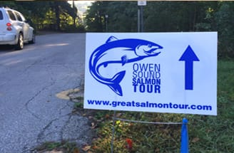 salmon tour sign
